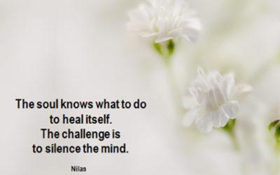 Maandelijkse meditatie Zondag 3 juni