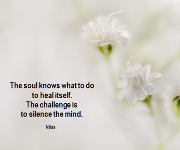 Maandelijkse meditatie Zondag 4 november